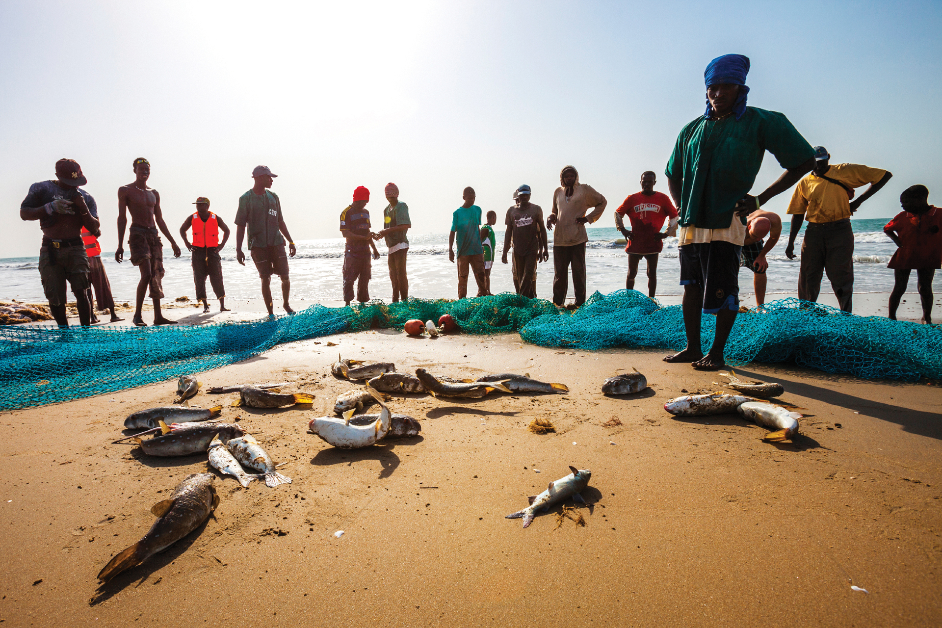 Fishermen and meagre catch on beach with nets, West Africa